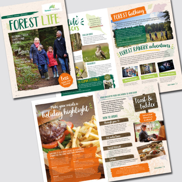 Forest Life Magazine designed for Forest Holidays by Birdhouse Design limited